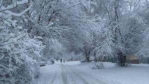Погода в Украине 9 февраля: от -17 до +7