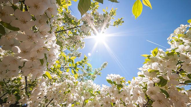 Капризный май: погода покажет, на что она способна