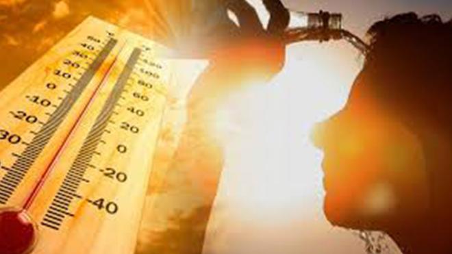 Месяц обещает быть жарким: Кульбида составил прогноз погоды на август