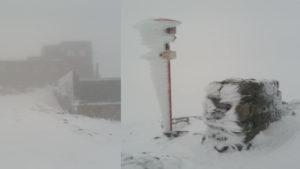 В Украине в первый день лета выпал снег: впечатляющие фото