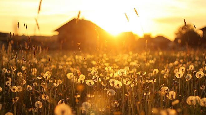 Летнее солнцестояние будет необычным: о чем говорят специалисты