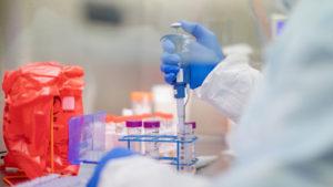 Новосибирские ученые получили нейтрализующие коронавирус антитела