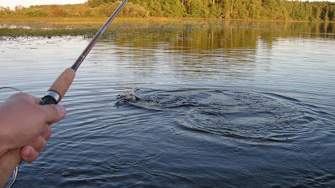 Поймана рыба с человеческими губами и ртом