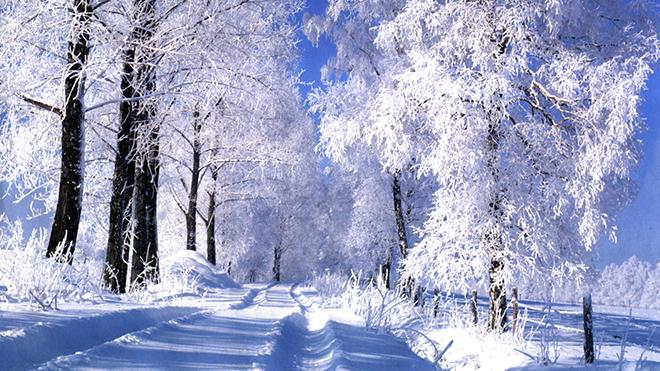 Россиян предупредили о суровой зиме