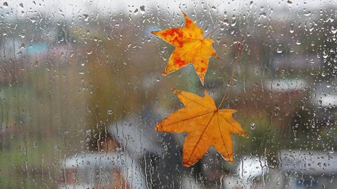 Новости Украины – Синоптики рассказали, какой будет погода на выходных