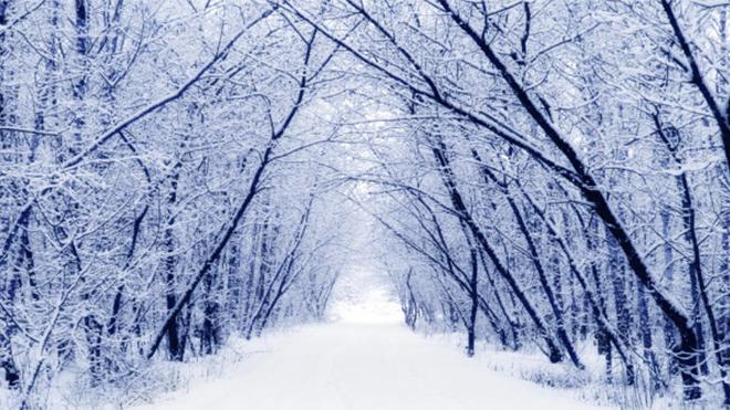 Դեկտեմբերը կանցնի նորմայից տաք․ Գագիկ Սուրենյանը՝ դեկտեմբերին սպասվող եղանակի մասին