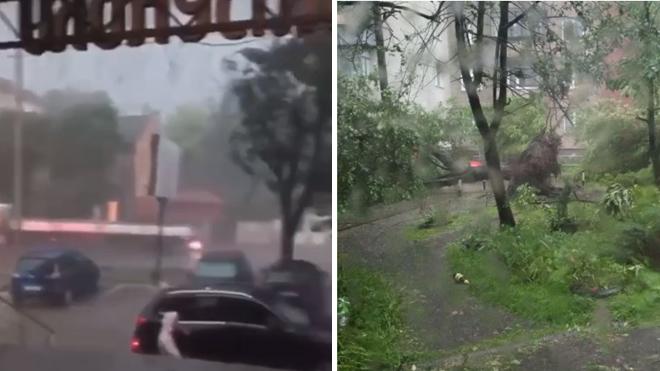 Новости Украины – Львовом пронеслась мощная буря. Видео, фото